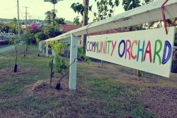 community citrus orchard