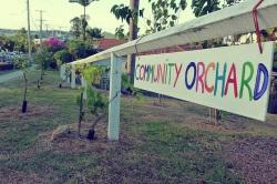 community citrus orchard